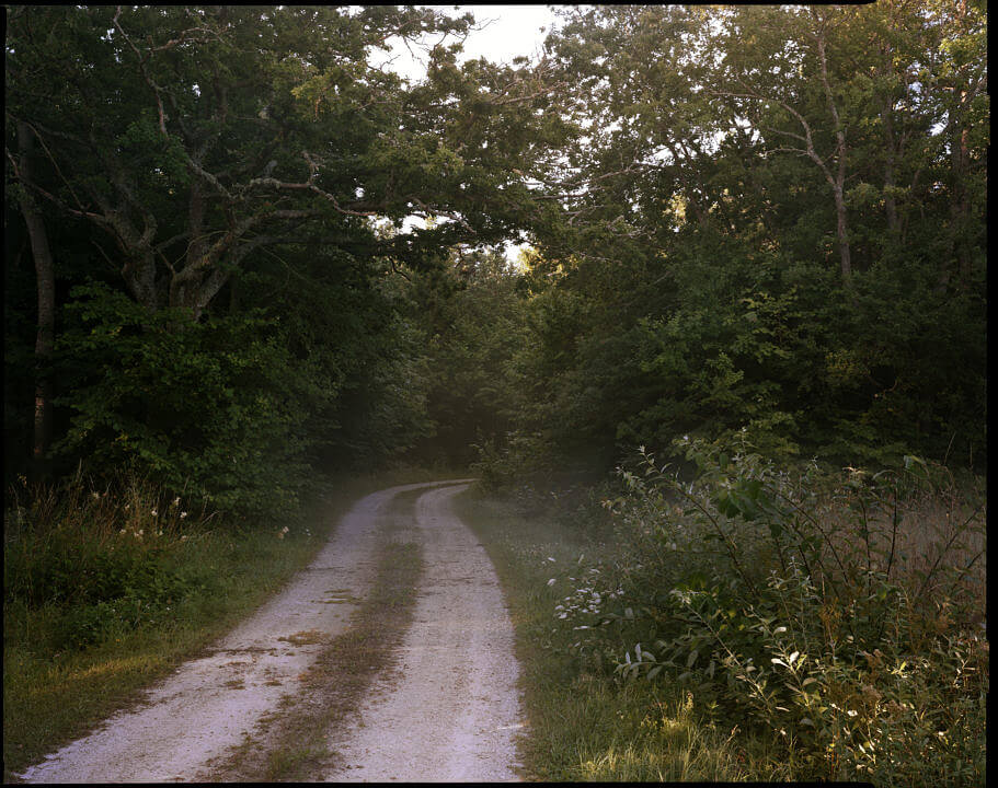 FelixOdell_Landscape257